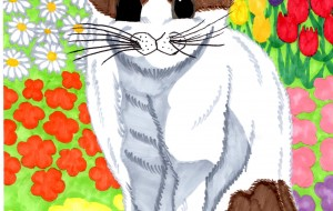 猫と花畑 - Takeshi
