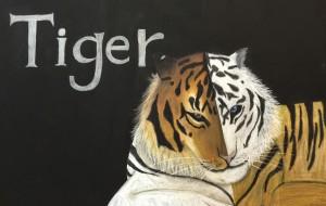 Tiger - RINA