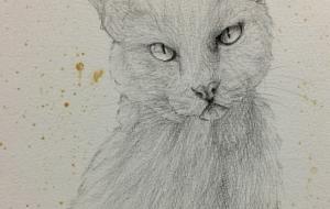 王冠の猫 - RINA