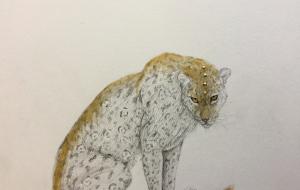 黄金の豹 - RINA