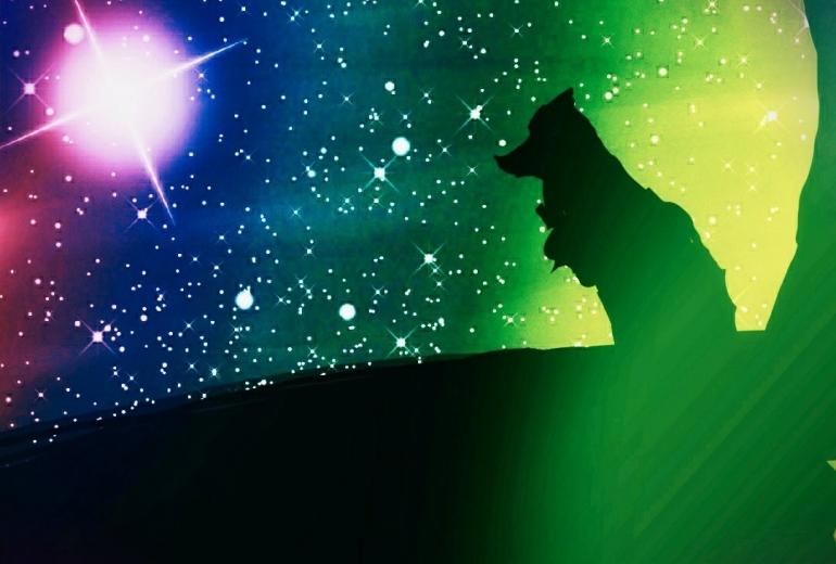 オオカミの夜