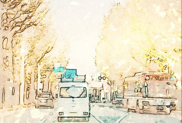 イチョウ街道