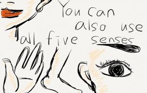 五感を研ぎ澄ませ - 鈴木小波