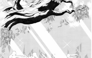 湖の妖精 - 虎目梨那
