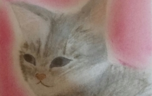 猫 - なおみ