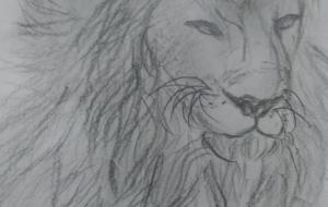 ライオン - 向山淳子