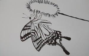 蝶々 - 岡本武浩