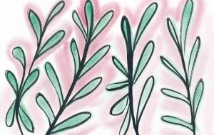 目立たない新芽に - 桃うさぎ