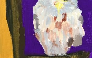 An owl - Yugo