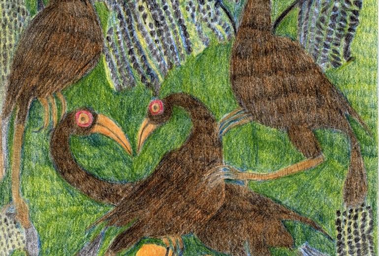 草原を生きぬく鳥たち