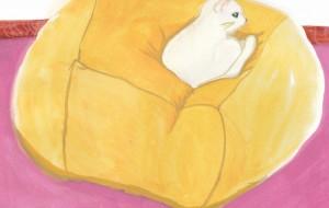 我が家の猫 - Rie