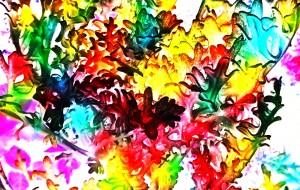 珊瑚の森 - 相田朋子