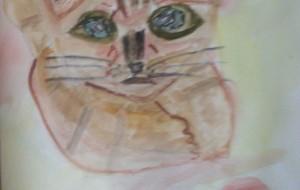 12月の猫 - マサミ