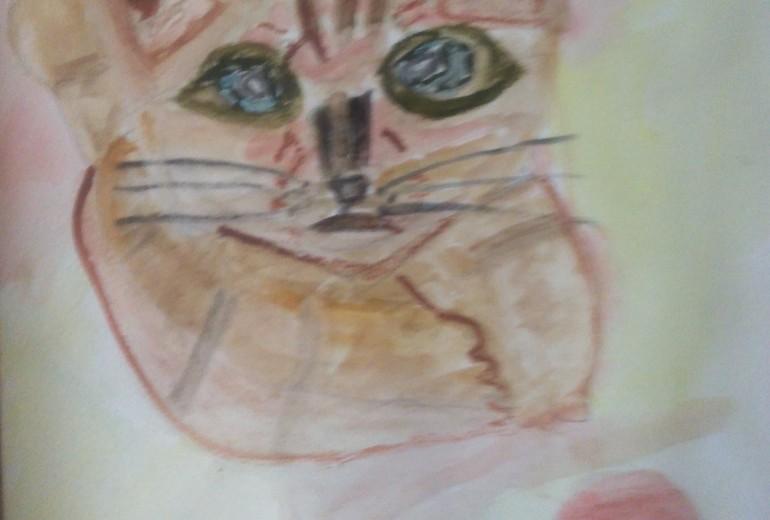 12月の猫