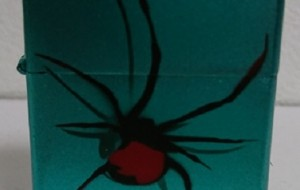 蜘蛛 - 那偉斗51