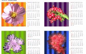 2019_Calendar_01 - 太陽