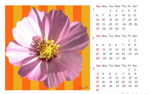 2019_Calendar_1 - 太陽