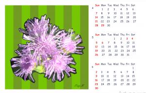 2019_Calendar_2 - 太陽
