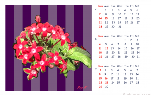 2019_Calendar_3 - 太陽