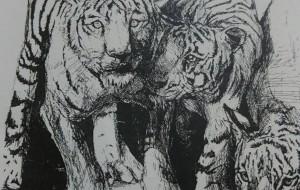 虎 - ポポリ