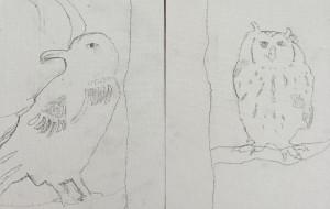 A crow and an owl - Yugo