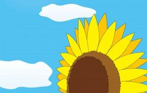 青空のひまわり畑 - ブルーム