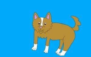 犬 - subaru