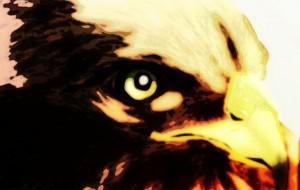猛禽3 - 道人