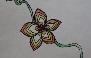 カラフルな花 - 夏みかん