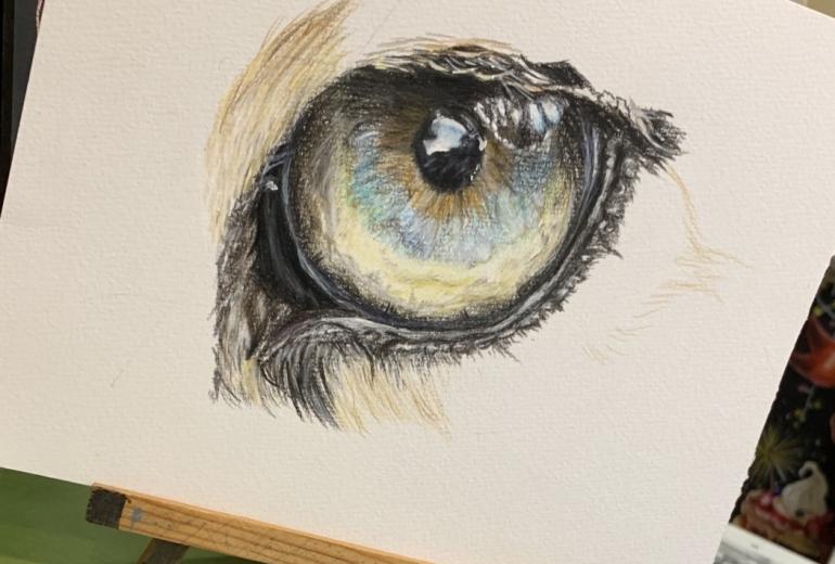 ヒョウの目