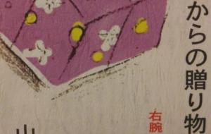青春時代の贈り物~右腕に秘められた思い(本23ページ) - ポポリ