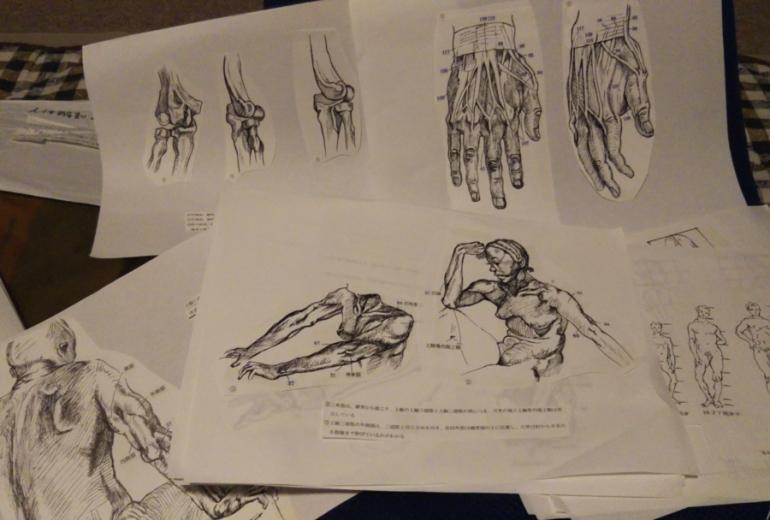習作 (人体解剖 の本一冊まるごと)一部公開