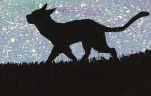星空の下の散歩 - RINA