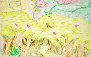 カラフルウッドの森 - ショウヘイ