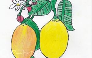 檸檬 - MASA