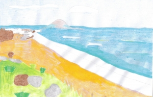 ハワイの海 - asami