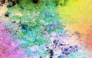 木々のにぎわい - 相田朋子