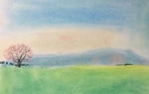 一本桜 - くみぱんつ