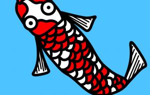 紅白メダカ - 神徳竜輝