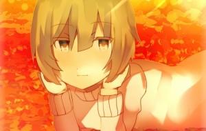 秋の落ち葉 -