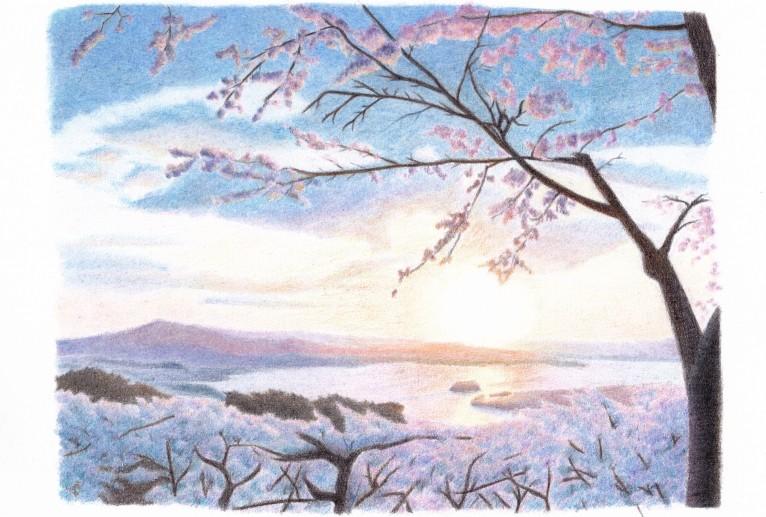 春の松島 - cocoa float