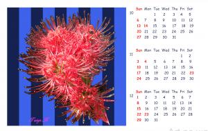 2019_Calendar_4 - 太陽