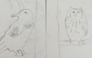 A crow and an owl - Yugo