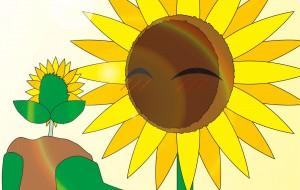 ひまわりの輝く芽と光 - ブルーム
