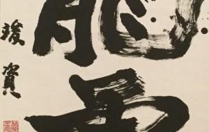 龍虎 - 松元竣資