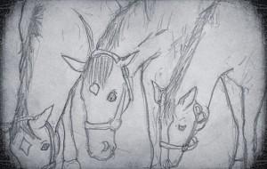青春時代の馬 - 小林由樹