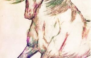虹色の馬 - 小林由樹