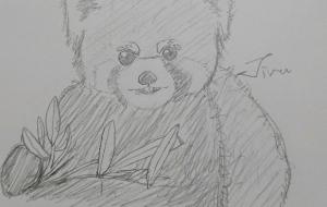 レッサーパンダ - ジル