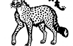 アジアチーター - シマハイエナ