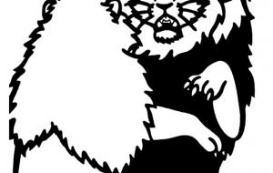 アフリカライオン - シマハイエナ